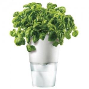 Ein cleverer Blumentopf macht die Pflanzenpflege super einfach - ohphoria.de