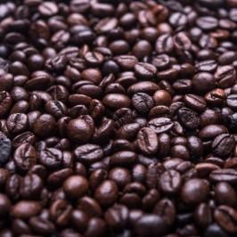 Katzenkaffee: Die Katze als Barista – das echt kuriose Kaffee Geschenk