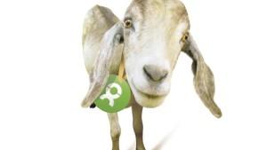 Bei oxfam unverpackt erinnert ein Kühlschrankmagnet an das Spendengeschenk - ohphoria.de