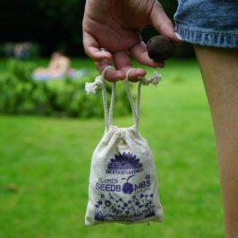 Blumensamen Geschenk: Rebellen aufgepasst, mit SEEDBOMBS unsere Städte wieder blühen lassen