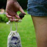 Die Samenbomben einfach aus der Ferner werfen - kein Einpflanzen nötig