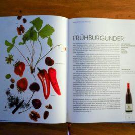 Wein. Die Biebel. ähhh, das Buch! Für alle, die neugierig auf mehr Wein Wissen sind